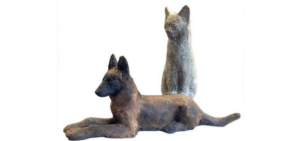Curt Lehmann: Hund & Katz hoch sensibel